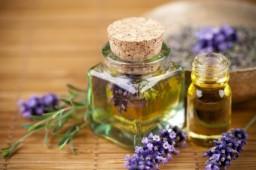 ESENCIALES DE INVIERNO (una guía de aromaterapia)